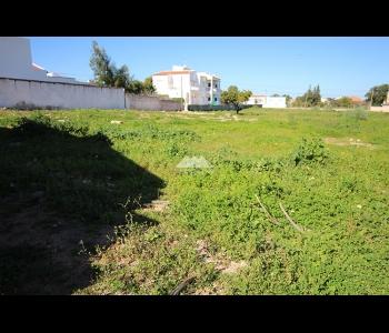 Terreno Urbano c/ 4.914m2 e projecto aprovado em Altura